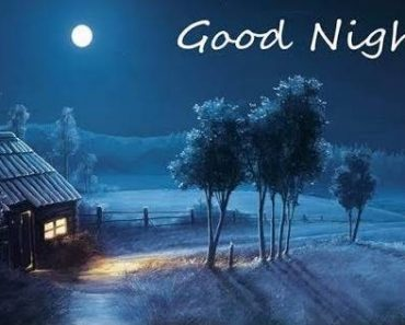 Good-Night Status in english, good night status for whatsapp & facebook, good night status for family & friends